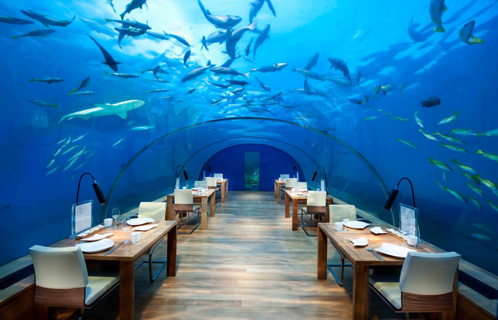 Ithaa Undersea Restaurant Views